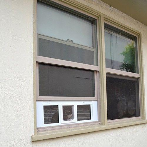Ideal Window Design Cat Door Windows