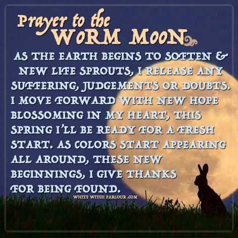 worm moon, crow moon, march moon, prayer, blessings, spells, witch, magick, healing, moon, luna, full moon, spring, rabbit, ostara, wicca, enchanted, new beginnings, release, wheel of the year, pagan, sabbat, spring equinox. www.whitewitchparlour.com