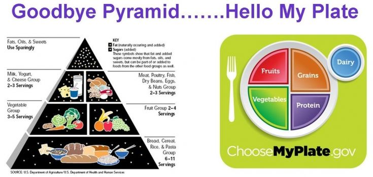 My Food Pyramid Health Pictures of Nutrition - Health Information Pictures