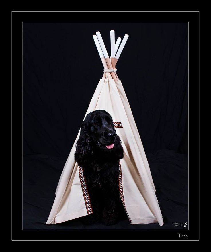 Thea in the Indian Teepee