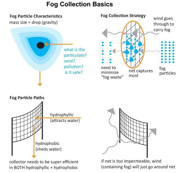 15 Best Images About Fog Mesh On Pinterest