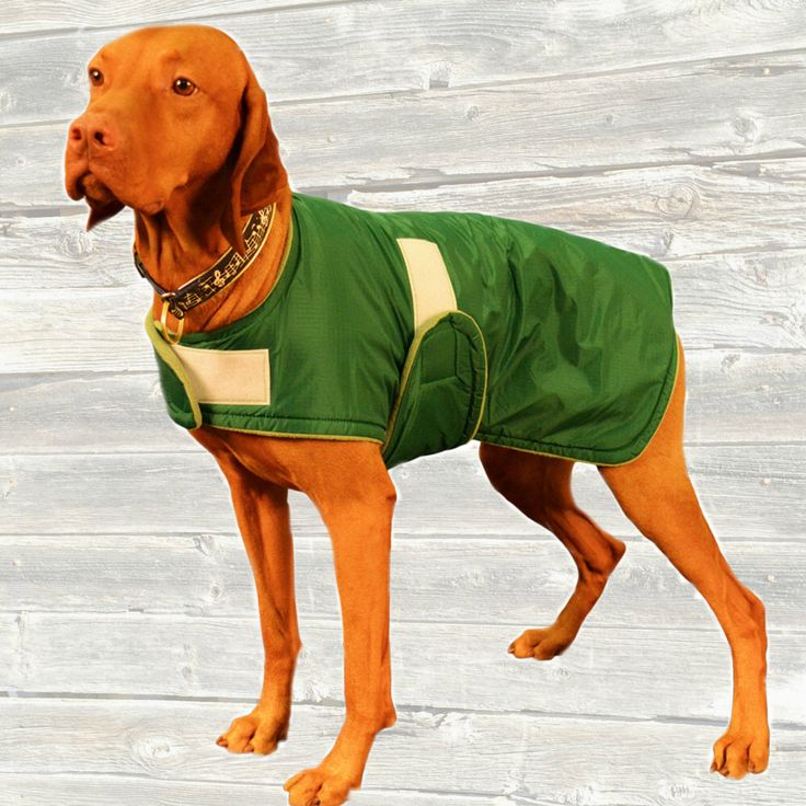 Winter Dog Coat, custom made just for your dog with adjustable velcro closures by madebyde on Etsy https://www.etsy.com/listing/212403088/winter-dog-coat-custom-made-just-for