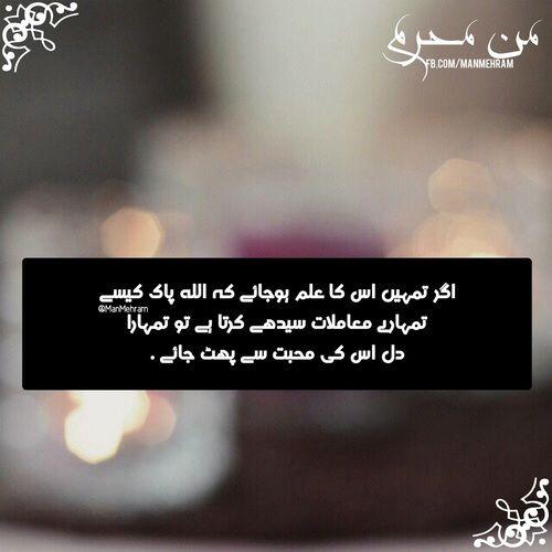 quotes, urdu, and urdu quotes image