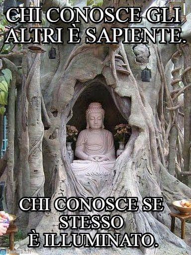 Siddhartha meme (http://www.memegen.it/meme/rkv8i6)