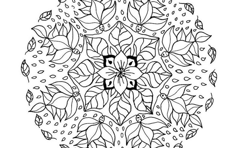 1000+ Images About Adult Coloring Pages On Pinterest