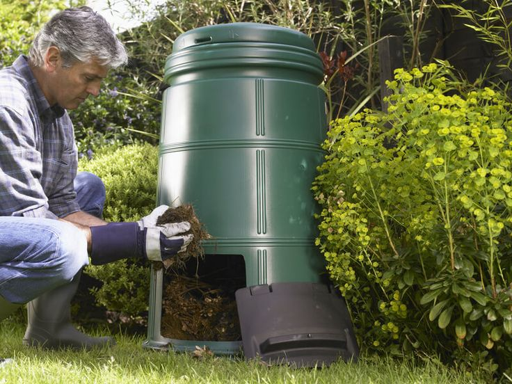100 Things You Can (and Should) Compost