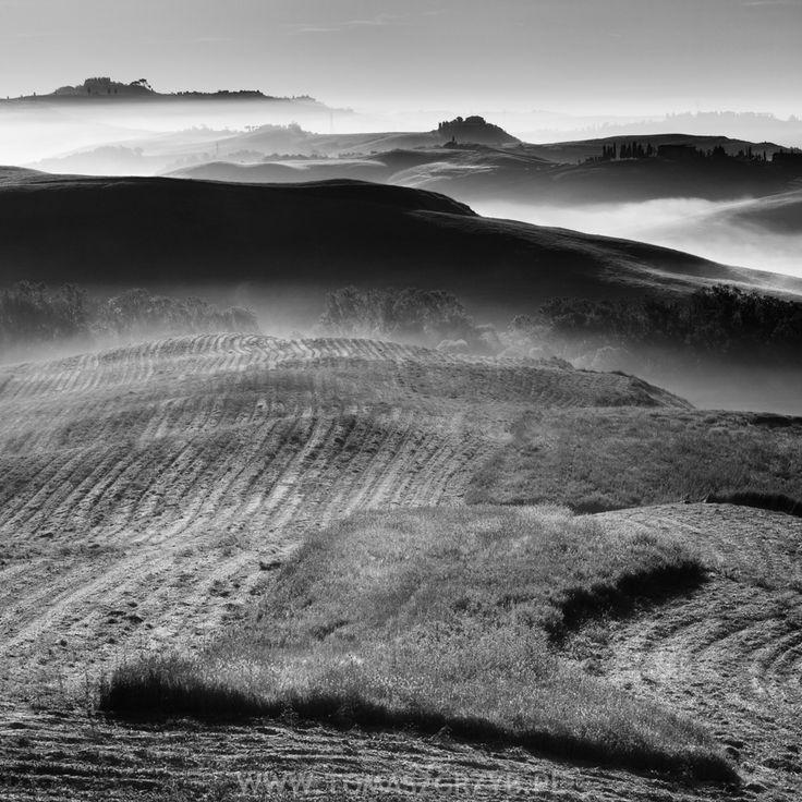 © Tomasz Grzyb
