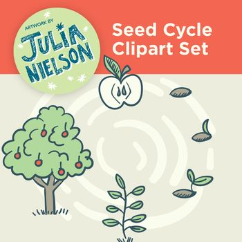 This clipart set is includes hand drawn illustrations of a seed's life cycle. Along with the complete cycle image you receive separate PNG files that can be layered onto a coloured background without big white squares around each object. Simply import the supplied PNG graphic images into your editing program, eg.