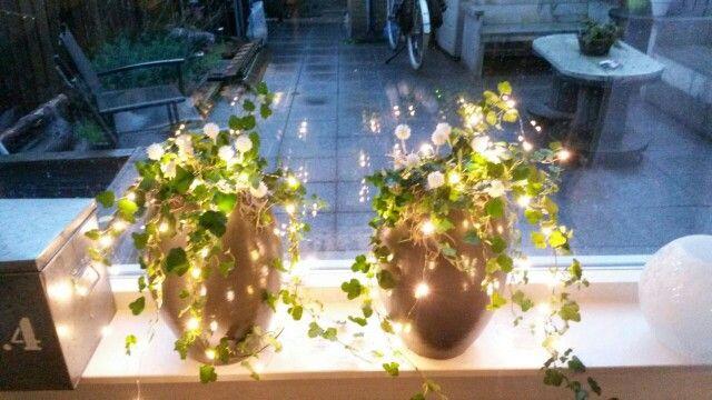 Kerst in het raam