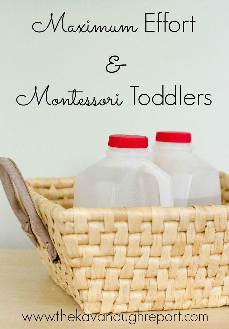 The Kavanaugh Report: Montessori Toddlers and Maximum Effort