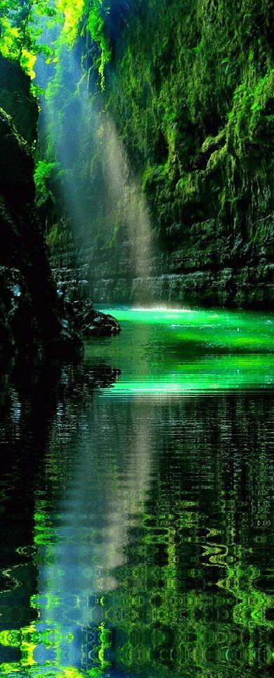 Encuentro paz en cada imagen de naturaleza.