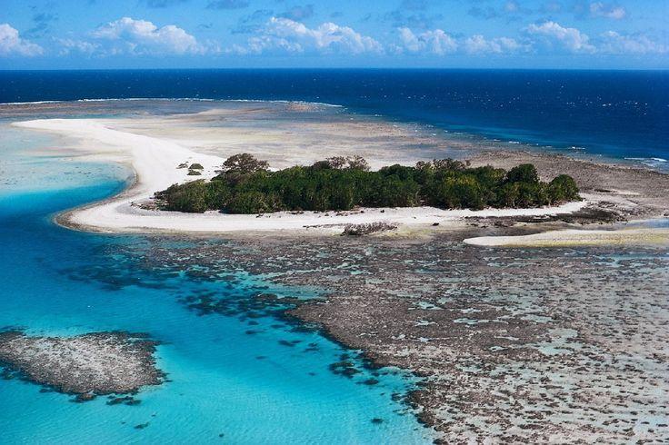 Hotel Austrálie-Expedice Pro Potápěče Na Velký Bariérový Útes, recenze hotelu, dovolená a zájezdy do tohoto hotelu na Invia.cz