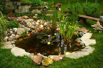 Small backyard pond: Small Fountain, Small Backyard