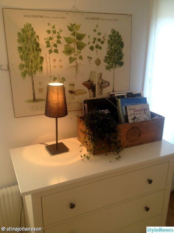 växt,björk,böcker,låda,byrå