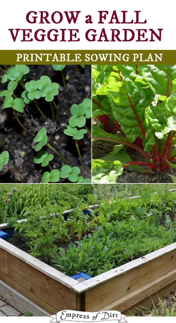108947 Best Jouw Pins Voor Your Pins For Images On Pinterest Gardening
