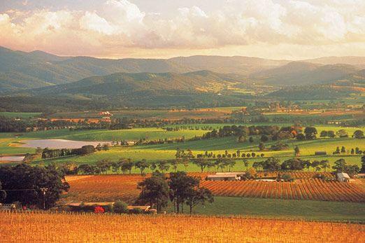 Yarra Valley Melbourne Australia