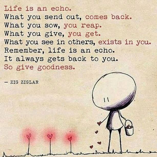 Life Is An Echo Quote Awesome 70 Best Think Images On Pinterest  Words Thoughts And Psychology