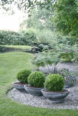 Love the little potted boxwoods