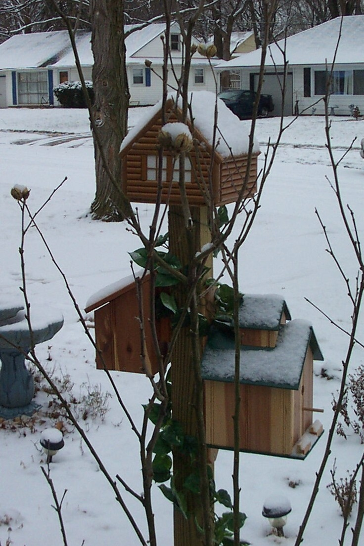 birdhouses in our front yard in kettering ohio bill koenig