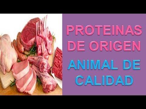 Proteinas De Origen Animal - http://ganarmusculoss.blogspot.com  Las mejores fuentes de proteinas de origen animal de calidad para nutrir a nuestros músculos para que crezcan. Este pescado es de las pocas proteinas de origen animal que contiene ácido línolénico, un ácido graso esencial.