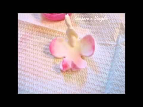 Orchidea Pasta di Zucchero