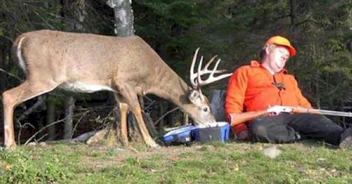 19 Funny Hunting Pictures And Photos That Will Surely Make You Laugh