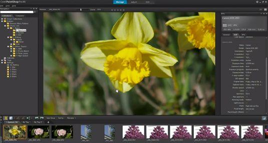 The best free graphic design software | Graphic design | Creative Bloq