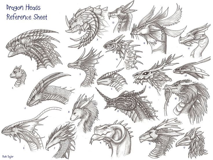 dragon faces | archir_dragon-heads-reference-sheet1.jpg