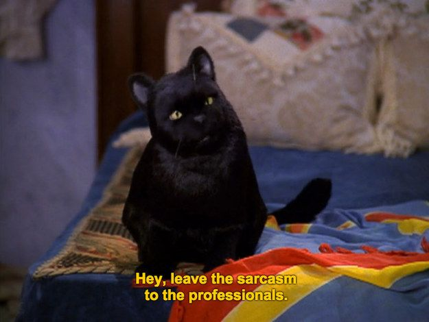 When your mom says something snarky | 27 Times Salem The Cat Said What You Were Thinking