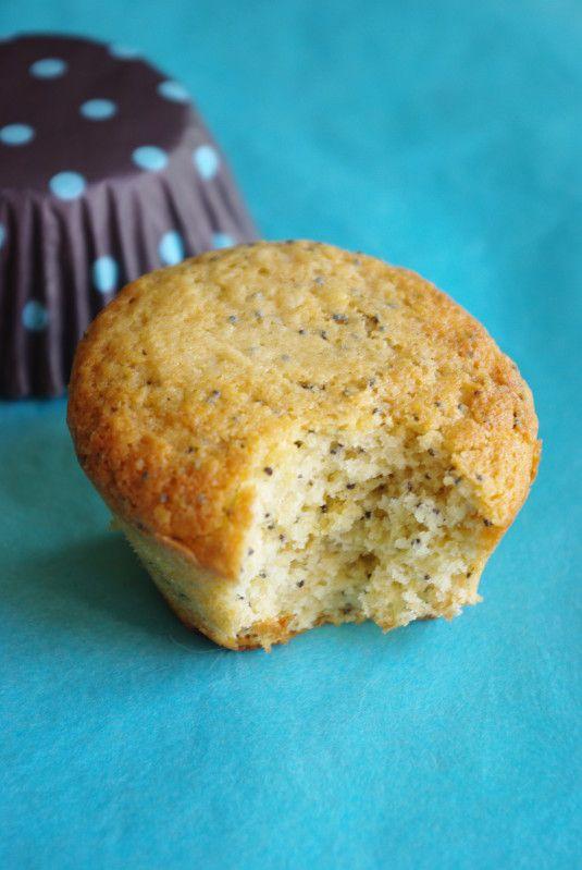 Pour la petite histoire en me promenant sur un blog que je découvrais j'ai trouvé une recette de muffins au citron et graînes de pavot. L'association m'a de suite séduite et j'avais hâte de tester ! Bref le lendemain j'étais aux fourneaux ... et quelle...