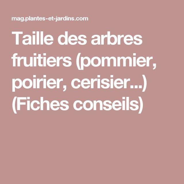 Taille des arbres fruitiers (pommier, poirier, cerisier...) (Fiches conseils)