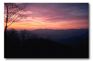 The Appalachian Trail starts just 8 miles north of Amicalola Falls. Not a far trek from Blue Ridge at all!
