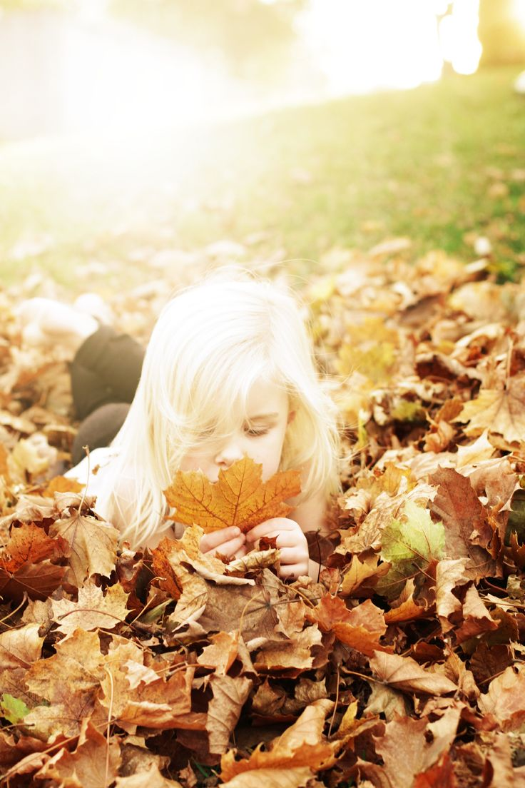 fall light.