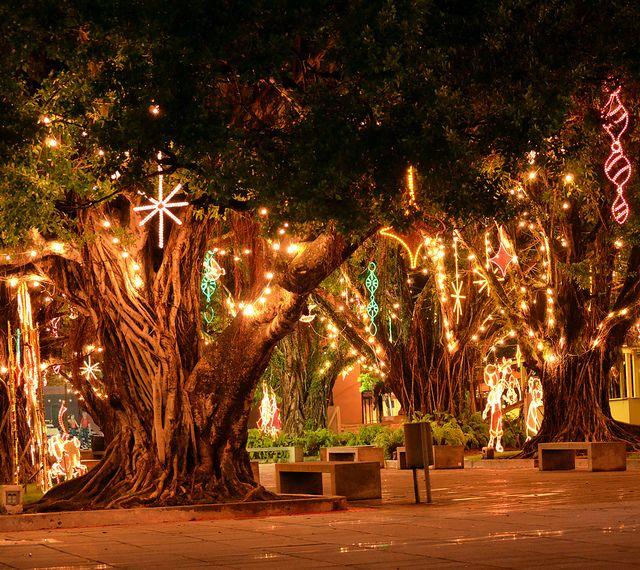 Christmas in Puerto Rico | Christmas at Humacao, Puerto Rico | Flickr - Photo Sharing!