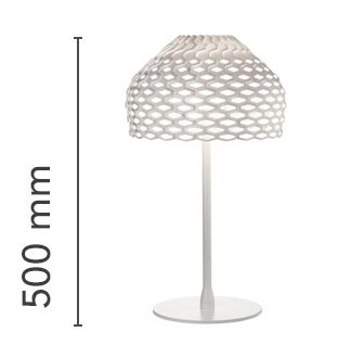 Diffused light table lamp.