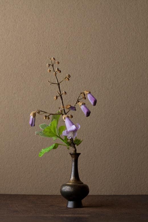 2012年6月1日(金) 身近なのに、遠い花。紫という色のせいでしょうか。 花=桐(キリ) 器=金銅華瓶(鎌倉時代)