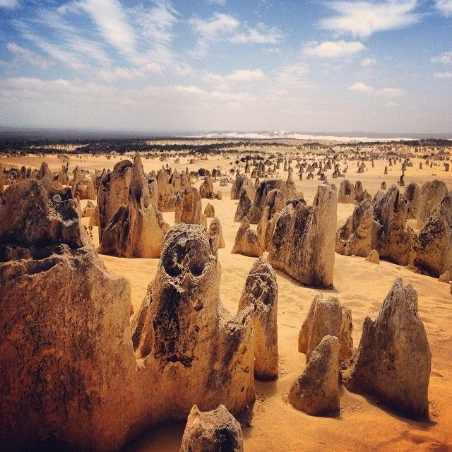 A few thousand 500,000 year old rocks.  The Pinnacles · Pinnacles · PinnaclesDesert  · Desert · Rocks · Limestone ·Sand · Nambung National Park  · National Park · Cervantes · Perth · Western Australia