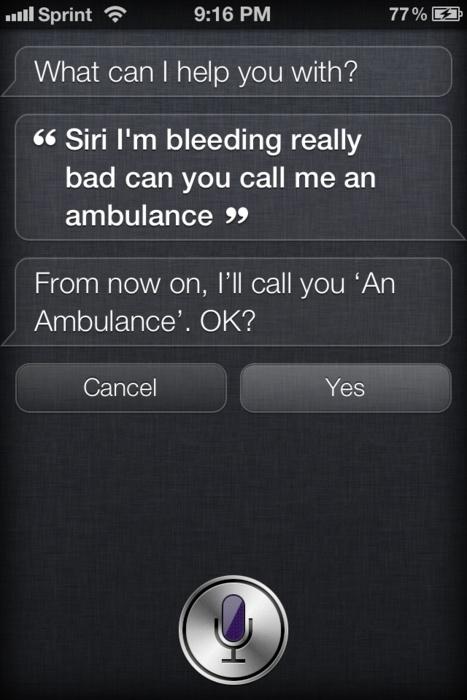 i love siri: Stupidity Siri, Siri Sense, Funny Shit, Crafty Siri, Siri Fails, Funnies Response, Funnies Shit, Siri Haha, Siri Suck