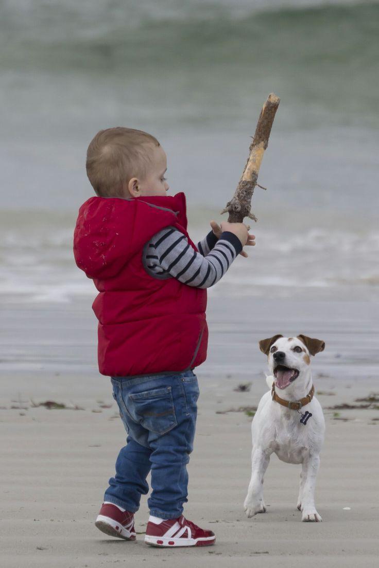 Niño jugando en la playa con un perro