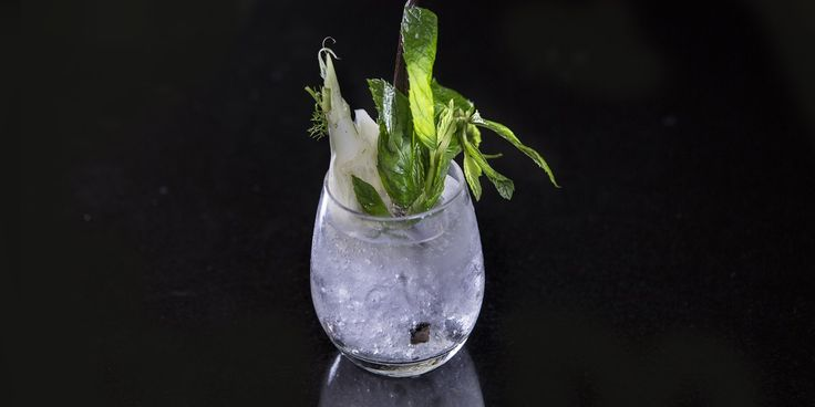 This fennel-infused gin recipe from Paul Welburn offers a delightfully fresh take on the classic, using sous vide equipment to compress the fennel and inject the maximum amount of flavour into the gin. Eschewing citrus for lemon balm is another clever twist, while the drink is saved from sourness by using fresh vanilla seeds.