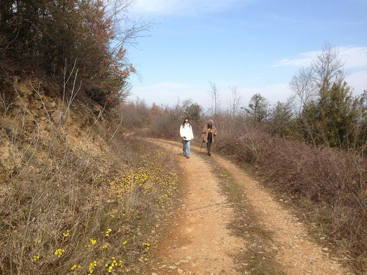 Hiking with trigiro - one day tour - Greece #trigiro #tour #hike #feel #nature #nicePath #northGreece #Greece #travel
