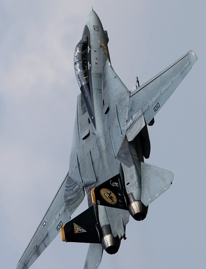 F-14 Tomcat First job as a newly minted engineer was manufacturing radar systems for this plane.