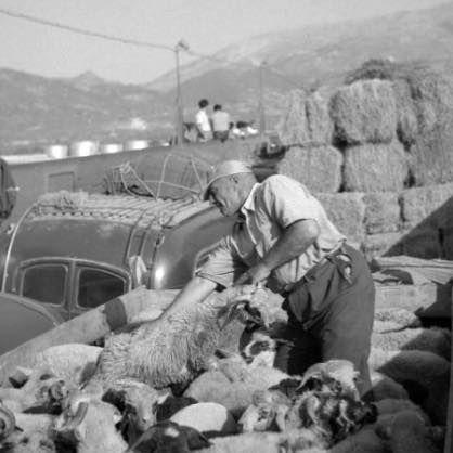 Robert mc Cabe 1954 περνά το ΡΙΟ-Αντιρριο με φέρρυ