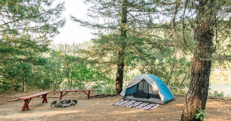 Reserve camping sites online in Mill Pond Camp. Camp on the edge of a lily-pad covered pond. This heavily wooded area provides great privacy and excellent shade. You can enjoy...
