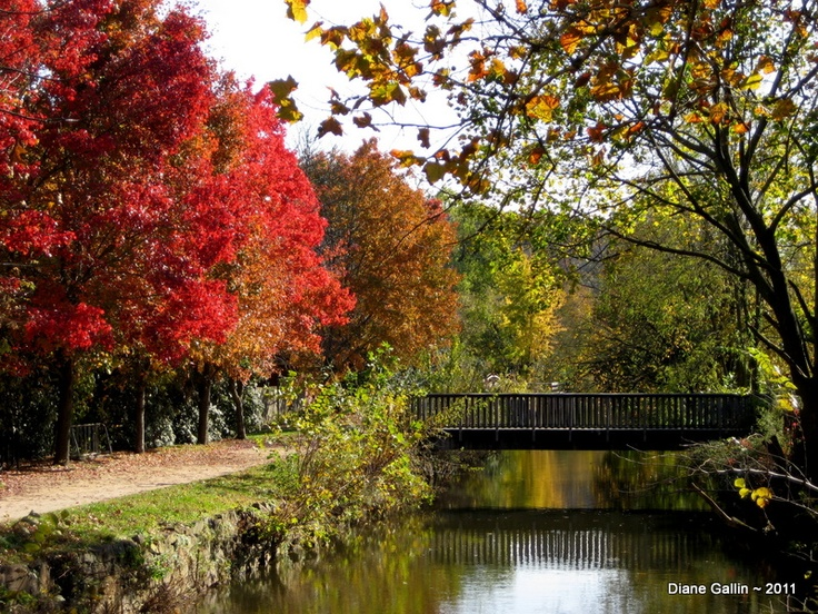 Early autumn is the season of the Earth element in Feng Shui.  The yang energy of summer is waning as nature prepares for winter.