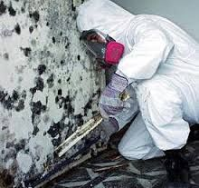 Mold Remediation Fort Lauderdale - If you reside in Miami Beach or surrounding areas and suspect mold in your home then your best course of action is to schedule a mold inspection. Hiring a good mold inspector for your Miami property will give you the best idea as to your risk for developing mold. You would be very shocked in regards to all of the places mold has the prospective to grow.