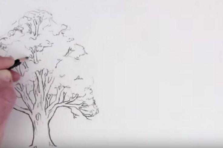 Vous aimeriez apprendre à dessiner un arbre sans qu'il ressemble à du brocoli? Voici comment!