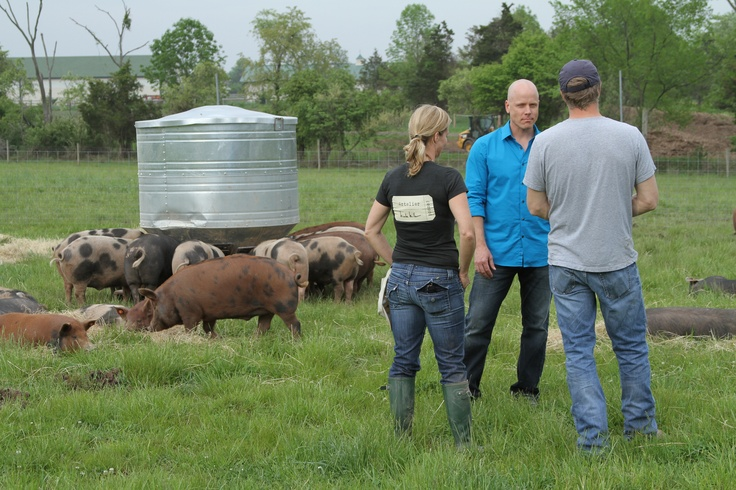 Chef Nathan Lyon visiting Double Brook Farm in Hopewell, NJ to learn how they raise a heritage breed of pork called Ossabaw hog - featured on #GoodFoodAmerica
