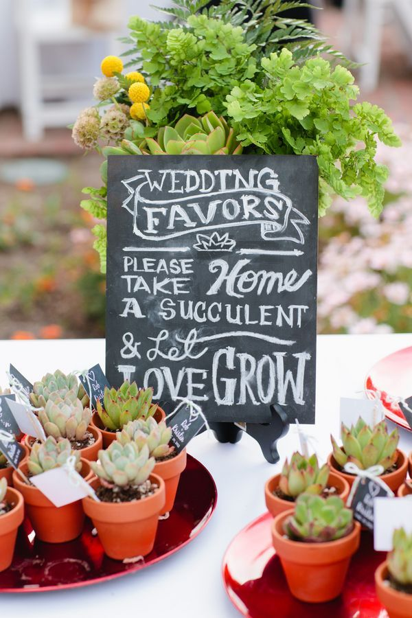 Succulent wedding favors with a cute little signage so guests don't forget to grab one #diywedding #rustic #succulent #gardenparty #weddingfavors