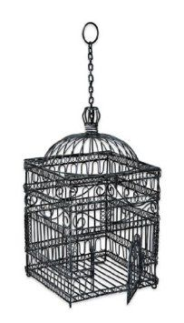 Amazon.com: Achla Designs Large Victorian Bird Cage: Pet Supplies
